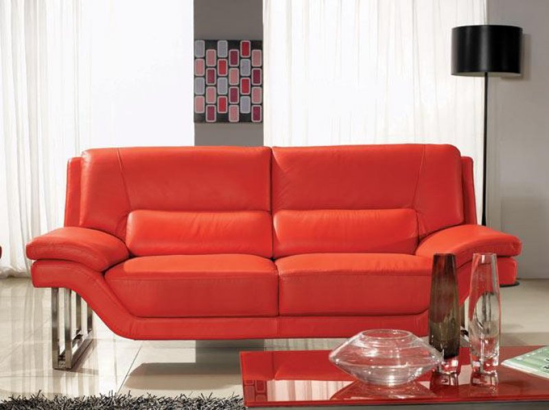 Modern Furniture Care Tips With Pets At Home La